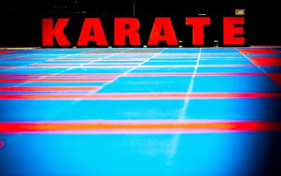Bodensee Karate Open + Landesmeisterschaft